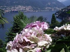 Apartment vacation rental in Como from VRBO