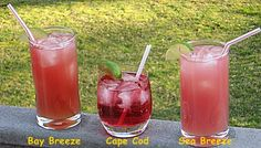Bay Breeze, Cape Cod, Sea Breeze | Hampton Roads Happy Hour - g.1.6