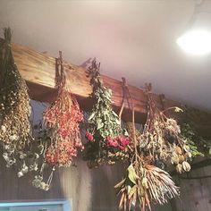 バケツに飾ってたドライフラワーを天井の梁から吊るしてみました✨✨ 意外に片付くし、吊るすのいい〜〜#ドライフラワー#ドライフラワーアレンジ#ドライフラワーのリース#フラワー#花#ばら #吊るす