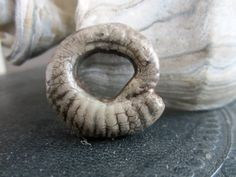 Small Rustic Ammonite Donut Bead Focal via Etsy