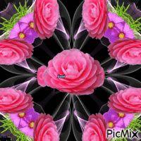 Kaleidoscoper rose Roses, Board, Flowers, Plants, Pink, Rose, Floral, Plant, Royal Icing Flowers