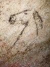 Cueva de Tito Bustillo. Arte rupestre, Ribadesella, Asturias