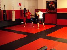 Martial Arts or MMA Floor System In Use .