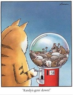 Millions of people all over the world were fans of The Far Side! The Far Side was a single-panel comic created by Gary Larson Far Side Cartoons, Far Side Comics, Funny Cartoons, Funny Comics, Gary Larson Cartoons, Haha Funny, Funny Cute, Hilarious, Funny Stuff