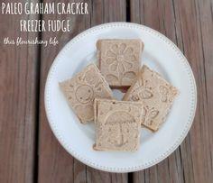 Paleo Graham Cracker Freezer Fudge Recipe - This Flourishing Life