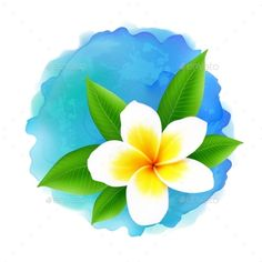 Buy Vector Frangipani Flower On Blue Watercolor by art_of_sun on GraphicRiver. Vector frangipani flower on blue watercolor imitation background Doodle Art Drawing, Watercolor Drawing, Watercolor Flowers, Watercolor Paintings, Watercolours, Rainbow Flowers, Pastel Flowers, Plumeria Flowers, Tropical Flowers