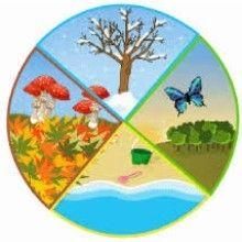 Accueillir chaque saison pour accepter les cycles de la vie, œuvrer à son mieux-être, son épanouissement personnel et professionnel.