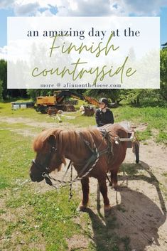 A travel tale of how I spent a day in the countryside of Finland - and how you could spend yours, too! Travel Through Europe, Europe Travel Guide, Places To Travel, Travel Destinations, Online Travel, Travel Companies, Beautiful Places In The World, Short Trip, Day Trips