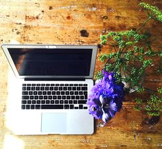 Delphinium meets fennel meets apple  #inspiration #blog #writing