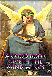 A Good Book Giveth The Mind Wings.  A Fairy Sits Under the Full Moon, Her Mind Engrossed in Reading.
