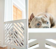 LOVE this doggy gate full tutorial on how to make it - 30 Lovely Diy Dog Door Concept Diy Dog Gate, Diy Baby Gate, Pet Gate, Baby Gates, Dog Gates, Wood Baby Gate, Wood Dog Bed, Christmas Wood Crafts, Diy Christmas