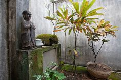 A patio in Geoffrey Bawa's house, Colombo