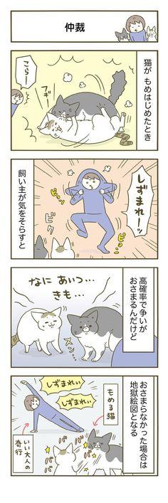 第86話 仲裁 Animal Pictures, Cute Pictures, Animals And Pets, Cute Animals, Cat Comics, Cat Boarding, Comic Strips, Dog Cat, Manga
