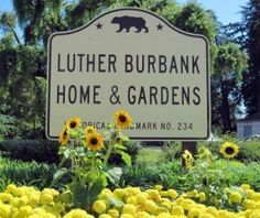 Luther Burbank Home and Gardens in Santa Rosa, CA    I livea block from here, great place to take a walk