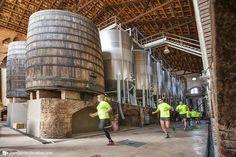 La I Maratón del Priorat se convertirá en una fiesta deportiva y cultural con más de 300 participantes https://www.vinetur.com/2014092416842/la-i-maraton-del-priorat-se-convertira-en-una-fiesta-deportiva-y-cultural-con-mas-de-300-participantes.html