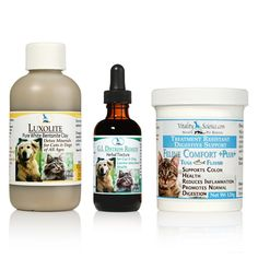 vomit and diarrhea treatment for cats