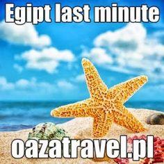 Wycieczki do Egiptu z Bydgoszczy   Wycieczki - Wakacje - Wczasy