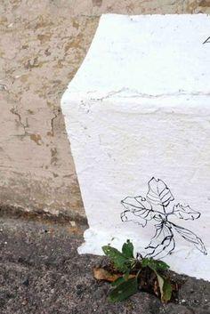 Ervas SP: projeto mapeia as plantas que vivem no concreto do Minhocão