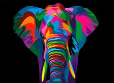 13 Colorful Animal Vector Illustration on Behance Lion Painting, Acrylic Painting Canvas, Canvas Art, Colorful Animal Paintings, Colorful Animals, Colorful Elephant, Ciel Pastel, Pop Art Portraits, Elephant Art