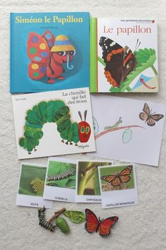 This week was under the sign of nature, flowers, insect . Easy Science, Science And Nature, Science Experience, Very Hungry Caterpillar, Eric Carle, Tot School, Kindergarten Classroom, Science Projects, Life Cycles