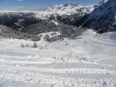 ski in Pinsolo