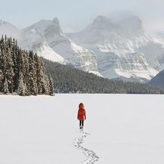 Oh how I've missed being in the mountains... ✨✨ This is my first time visiting Canada and I have been blown away by these beautiful winter landscapes – endless untouched snow and frozen lakes...So much more to share! x  @travelalberta #explorealberta