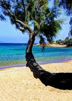 Aliki Beach , Paros Island (Cyclades), Greece