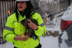 Reinstate Romanian Police officer fired after saving abused kitten! | Yousign.org