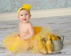 sweet little ducks