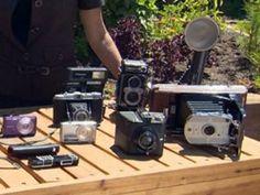 In The Garden With Nick Federoff: Best Cameras For Garden Photos « CBS Los Angeles