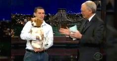 "Hilarious Beagle Steals David Letterman's Heart With ""Stupid Pet Trick"" via LittleThings.com"