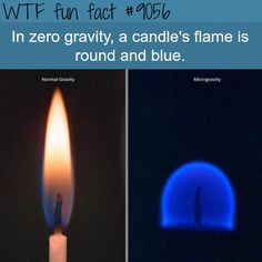 candle's flame in zero gravity - WTF fun facts - Humor Wierd Facts, Wow Facts, Intresting Facts, Funny Facts, Random Facts, Crazy Facts, Strange Facts, Fun Trivia Facts, Movie Facts