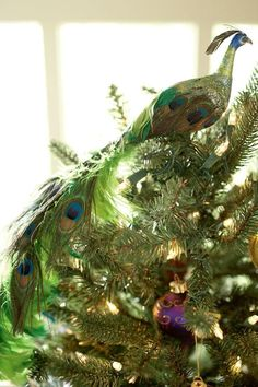 Peacock tree topper