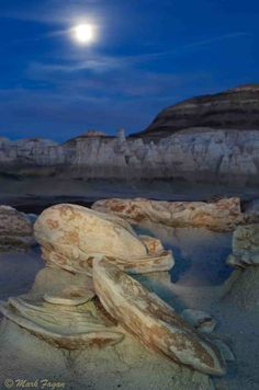 Bisti Badlands NM - Mysterious rocks and alien egg factory! Description from roadslesstraveled.us. I searched for this on bing.com/images