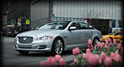 Jaguar XJ - not cheap or practical but so darn beautiful