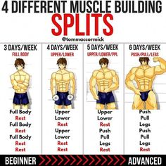 8 Powerful Muscle Building Gym Training Splits GymGuider com is part of Ectomorph workout When performing workout splits, they have to be tailored to each individual This is extremely beneficial a - Gym Workout Chart, Full Body Workout Routine, Gym Workout Tips, Workout Challenge, Fun Workouts, Push Workout, Week Workout, Workout Plan For Men, Men Exercise