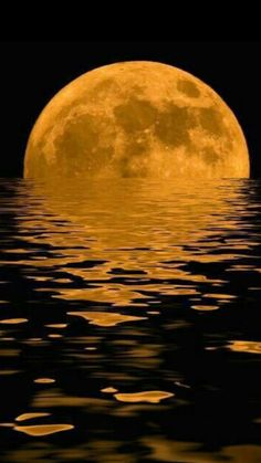 ✯ Moon Rising // reminds me of Saint Augustine; the moon was so big and red coming out of the watery horizon that we didn't know what it was. I love the moon. Moon Pictures, Pretty Pictures, Cool Photos, Moon Images, Amazing Photos, Nature Pictures, Stars Night, Stars And Moon, Beautiful Moon