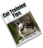 Free Cat Training Tips Guide