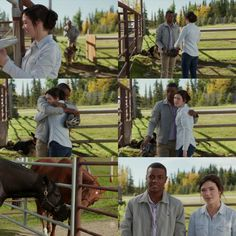 Adam: How about you? Georgie: I'm okay. He's doing a lot better, but I'm worried about him. Adam: It seems like he's found a friend. Georgie: Yeah, Spartan keeps coming to say hi. Heartland Quotes, Heartland Tv Show, Online Photo Editing, Photo Editing Tools, Heart Land, Alisha Newton, Amber Marshall, Im Not Okay, Creative Photos