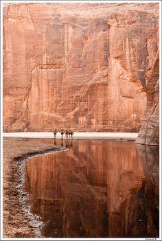 Archeï's Guelta, a photo from Borkou-Ennedi-Tibesti, North | TrekEarth RP by http://www.splashtablet.com the hyper-cool tablet case - sticks anywhere in kitchen or bath - on Amazon.com