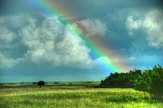 rainbow, alberta