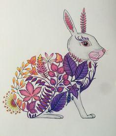 Enchanted Forest Johanna Basford Rabbit