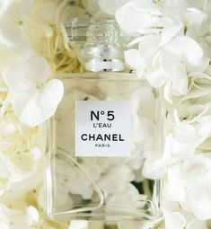 What You Don't Know About the New Chanel L'EAU – The Girl from Panama Everywhere I am inspired by fragrance – from food, to beauty, to perfume to flowers. Perfume Chanel, Best Perfume, Perfume Oils, Perfume Bottles, Perfume Million, Perfume Carolina Herrera, Perfume Calvin Klein, Perfume Invictus, Makeup Products