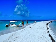 """Bahama Bob's Rumstyles: A """"White Christmas"""" in the Keys"""