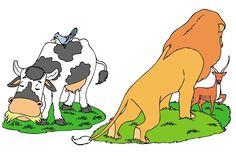 Relaciones interespecíficas - Escolar - ABC Color Scooby Doo, Disney Characters, Fictional Characters, Dogs, Color, Hyena, Fleas, Predator, Relationships