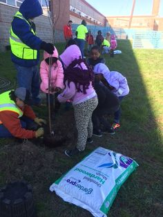 Student's at Richmond City Schools Carver Elementary working with Richmond Tree Stewards to plant 116 trees.