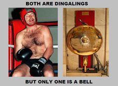 Bells #auspol