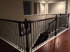 Best Iron Balusters Double Basket Stair Wrought Iron Baluster 400 x 300
