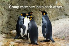 Groups Are a Great Way to Get to Know Other MembersSo You Can Help Each Other If you recently joined BlogJob, you've probably been invited to join one or more groups. Maybe you have even started y...