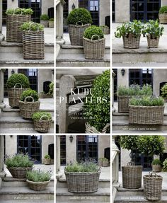 Artwood - the nicest catalogue! #basketplanters